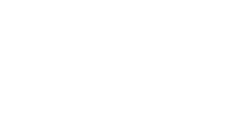 IndieFEST Award of Excellence Laurels